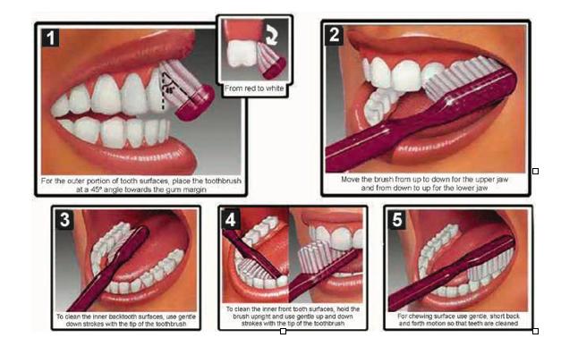 Brushing your Teeth | e-DantSeva